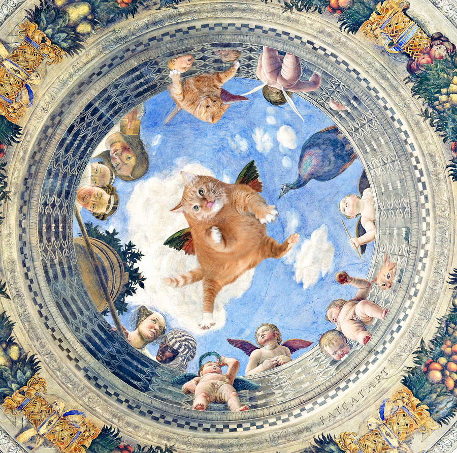 Mantegna-Oculus-cat-w