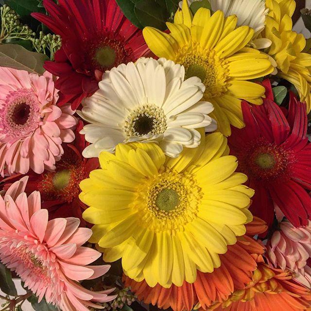 6ilmiosanvalentino fiori